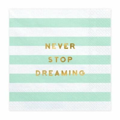 Salvete Never stop dreaming 33cm - 20 kom